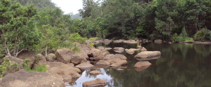 BANNER-3-Grose-River-near-Burralow-Creek10