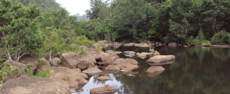 BANNER-3-Grose-River-near-Burralow-Creek10